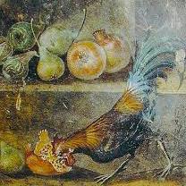 Fresco met haan uit PompeiiFresco met haan uit Pompeii