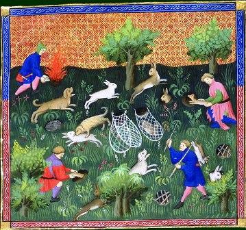 Hazenjacht in de Middeleeuwen