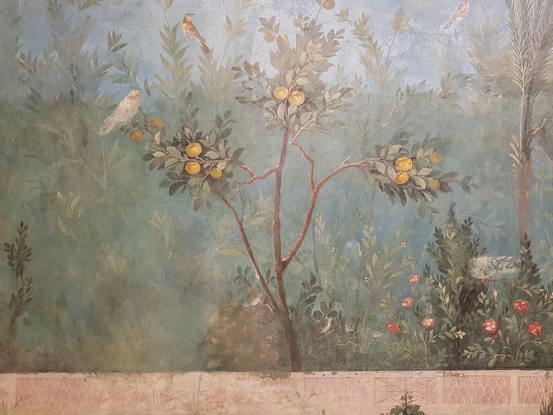 Kweepeer in de tuinkamer van de villa van Livia in Palazzo Massimo alle Terme in Rome