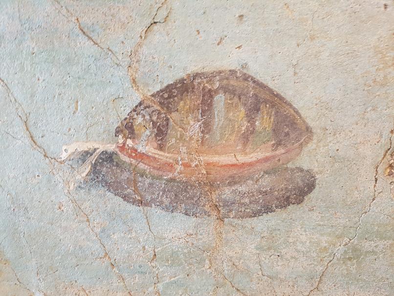 Fresco met mossel in Palazzo Massimo alle Terme