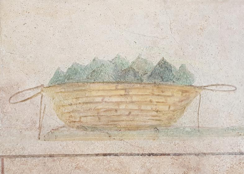 Vijgen uit het columbarium van Doria Pamphilj in Palazzo Massimo alle Terme