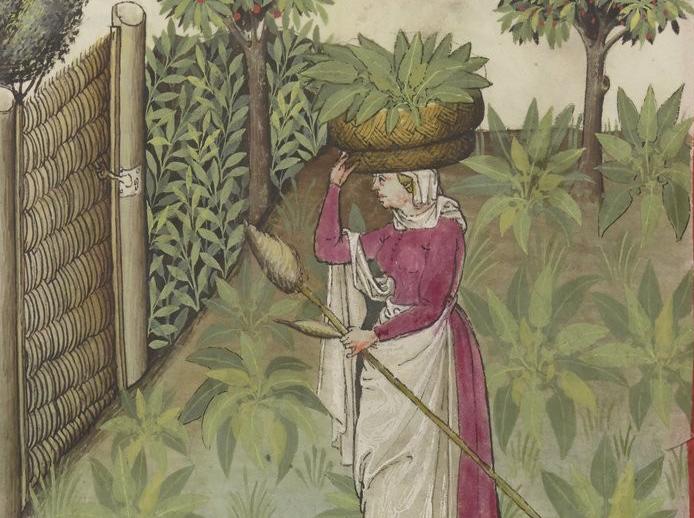 Dame met mand spinazie uit Tacuinum sanitatis (14e eeuw)