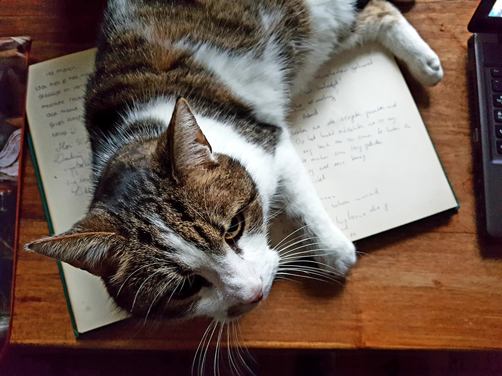 Hammoerabi leest gastenboek