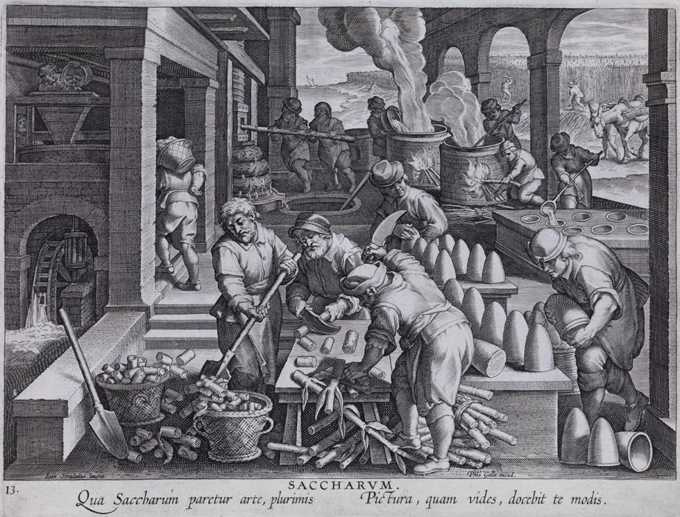 Productie van suikerkegels of suikerbroden (16e eeuw)