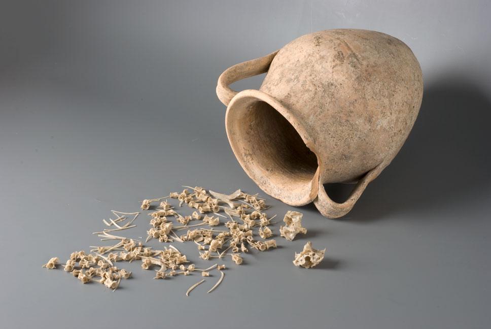 Pot met graten van makrelen uit Museum Het Valkhof, Nijmegen